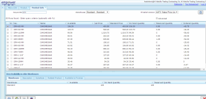 Empower Erp Inventory Product Info